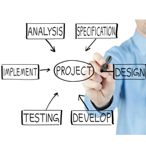 Software Procurement and Implementation